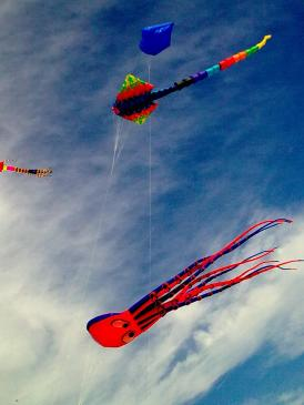manMap says let's go fly a kite!
