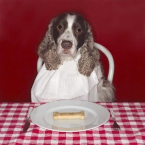 manMap's dog's breakfast
